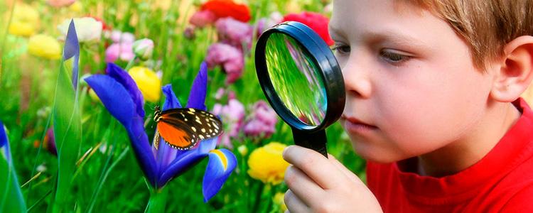 ekologicheskoe-vospitanie-v-detskom-sadu-1